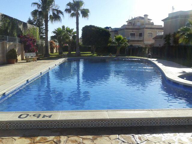 Paradise pools and gardens in orihuela costa address - Swimming pool repairs costa blanca ...