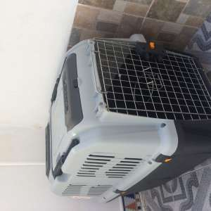 Airline approved pet crate for sale