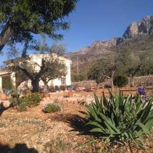 3 bedroom country house for sale near muro de alcoy