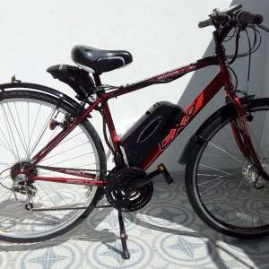 For sale: Electric Trekking Bike