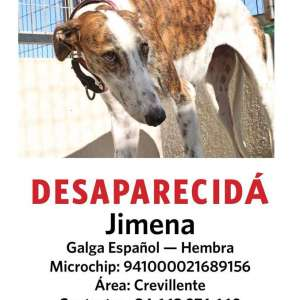UPDATE Jimena has been FOUND. Now safe.