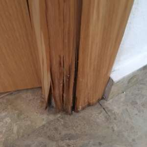 Can anyone recommend a carpenter / Joiner who could possibly repair a water damaged MDF door frame