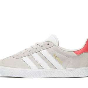 Lost: My neice lost her adidas trainer in the old town area not far from primvera park it is a greyish adidas trainer right foot size 6