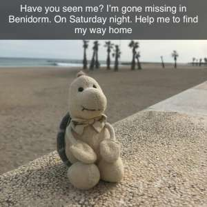 Lost: Green turtle soft toy