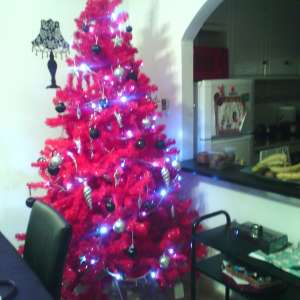 For sale: Red Christmas tree - €30
