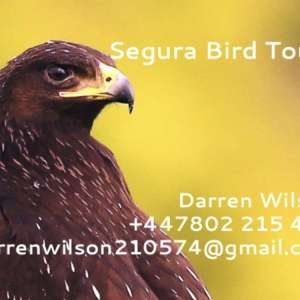 Segura Bird Tours