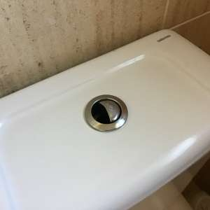 Wanted: Toilet flush button for Bellavista Toilet