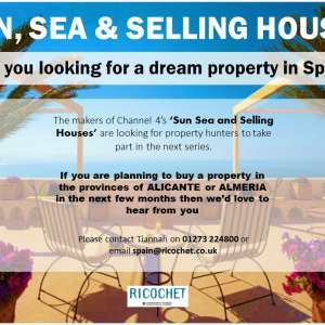 Sun Sea and Selling Houses - Looking for property hunters